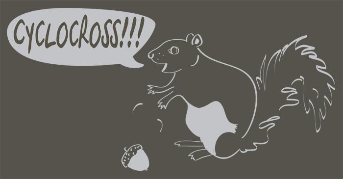 squirrel-funny